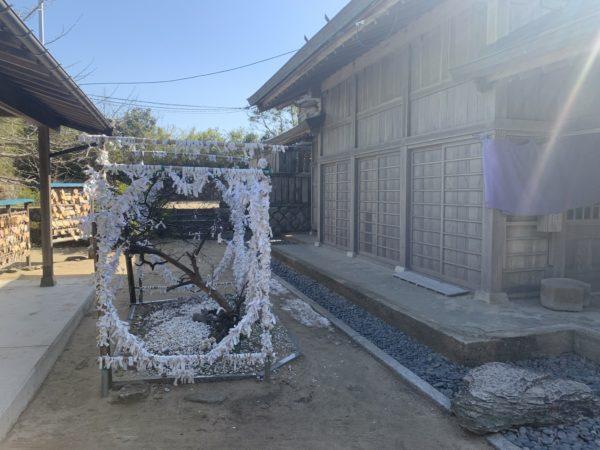 白兎神社13